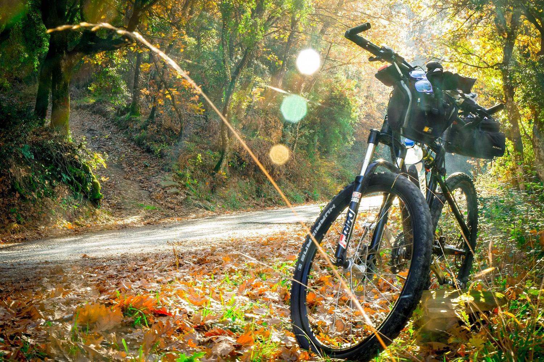 3 rutes amb bici per la comarca de la Selva
