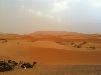 Desierto de Merzouga Zagora M'Hamid (2 días y 1 noche)