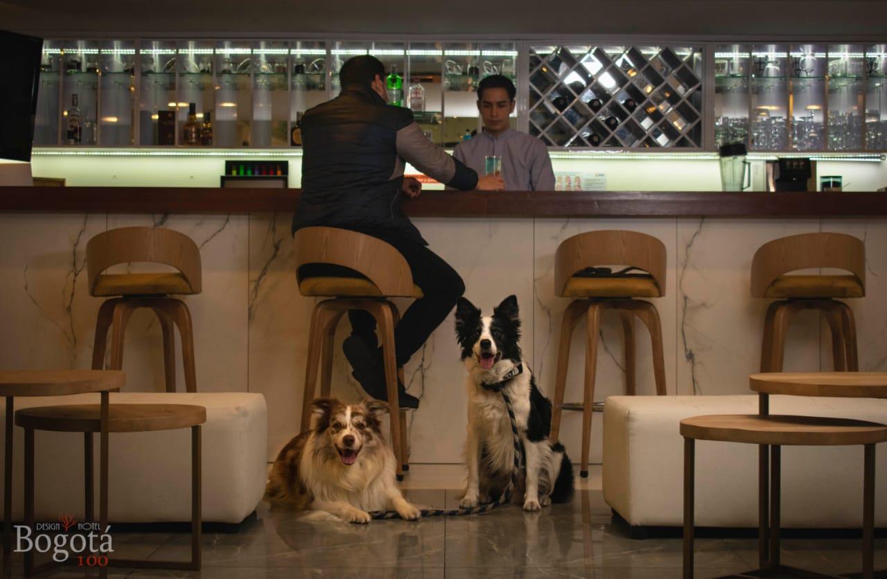 Hotel pet friendly en Bogotá