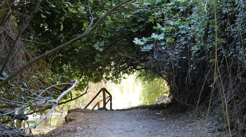 Qué hacer en Pozo de Alcón: naturaleza, descanso y seguridad