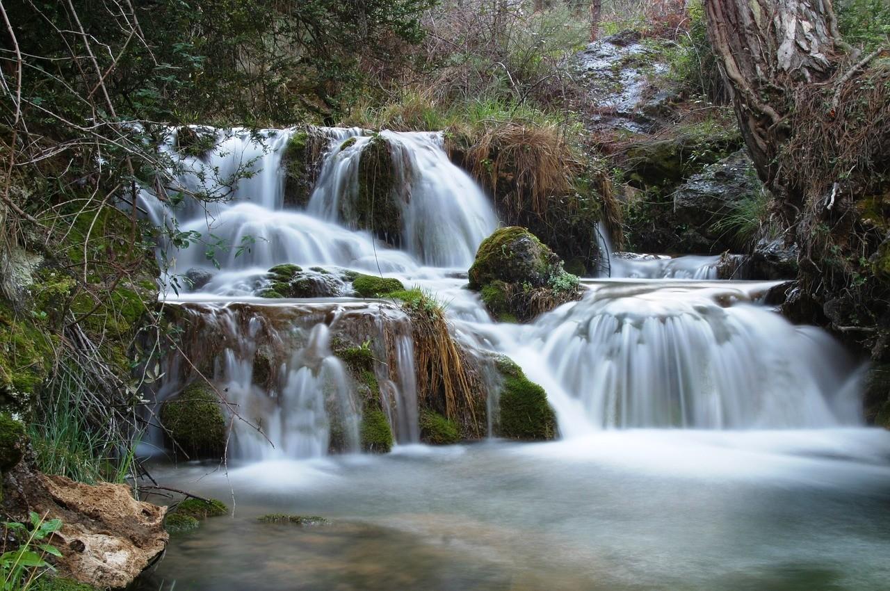 Descubre el patrimonio natural de la Sierra de Cazorla