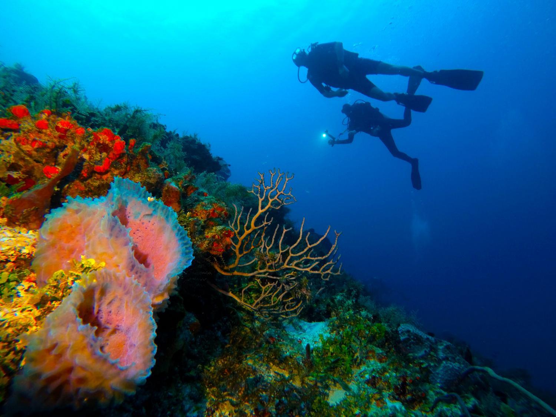 Las mejores excursiones en la Riviera Maya