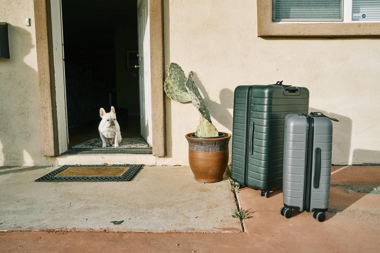 Hotel pet-friendly en Jaén: