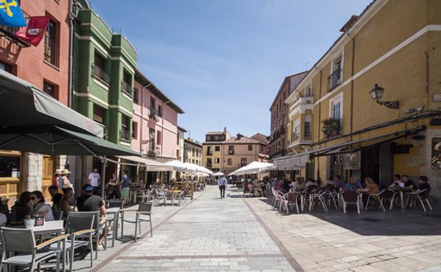 Apartamentos en el corazón de León para descubrir una ciudad única