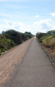 Vía verde Tarazonica