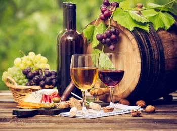 Wine tourism getaway to Huerta de Albalá winery