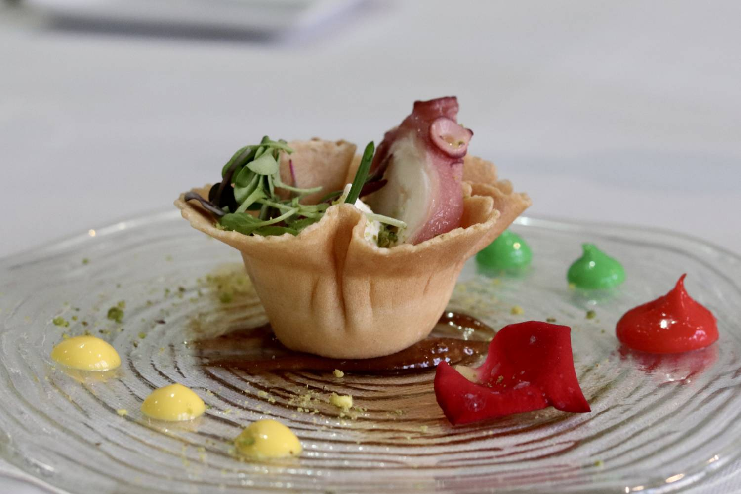 Discover our gastronomy
